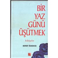 Bir Yaz Günü Üşütmek Ahmet Özdemir Babıali Kültür Yayıncılığı Basım Tarihi 2002