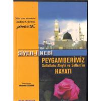 Siyer-i Nebi Peygamberimiz Sallallahu Aleyhi Ve Sellem-in Hayatı Mehmet Kasadar Hicaz Yayıncılık