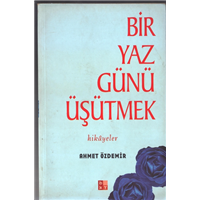 Bir Yaz Günü Üşütmek Ahmet Özdemir Bky Basım Tarihi 2002